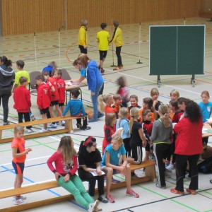 Hallensportfest 2014_25